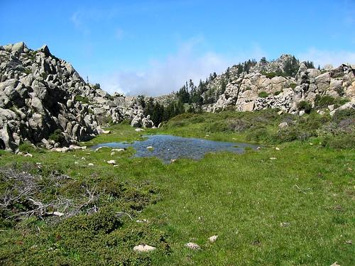 Le laquet du Monte Tignosu