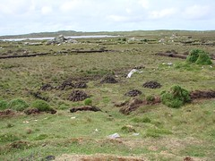 177 Peat piles (Esther/Mark) Tags: ireland peat bog