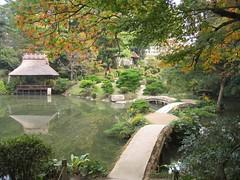IMG_0012-garden