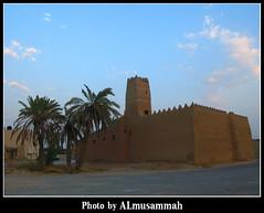 Heritage (almusammah) Tags: tree heritage riyadh saudiarabia canong7 olddirriyah