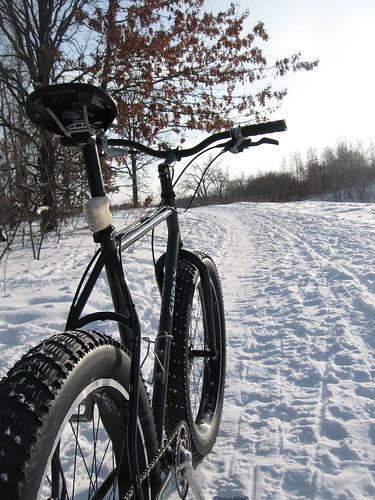 Ridge trail, Katherine Abbot Park, Mahtomedi, MN