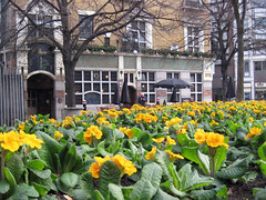 Blackfriars and Flowers