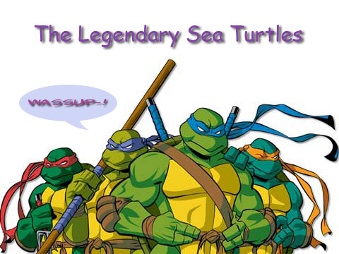 tmnt_sea turtles