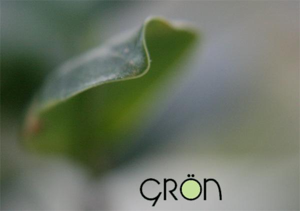 gron_2