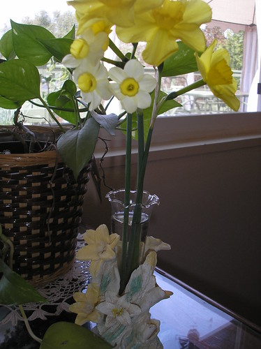 jonquils in a vase
