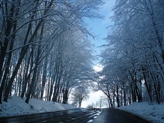Winter in Spring (anka.anka28) Tags: blue sky white snow tree nature grey explore mywinners theunforgettablepictures