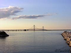 Mac Bridge another shot (by TamedWolf)