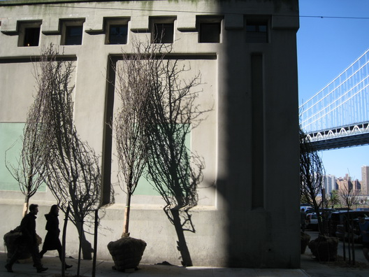 Dumbo Trees and Shadows