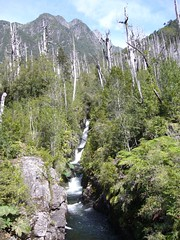 Trek Chaiten - Lagunas - Alerce - Escondidas - chute d'eau