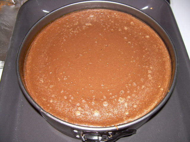 Amanda's_first_cheesecake_018