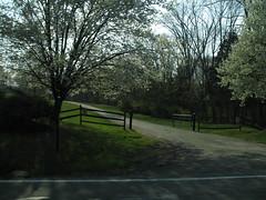 My New Jersey