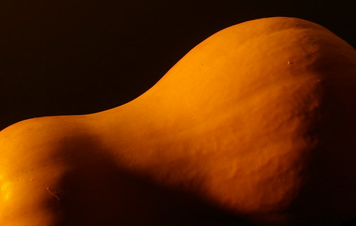 artistic photograph squash curves still life