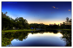 Blue... (Fernando Delfini) Tags: park blue parque trees sunset brazil sky people lake contrast canon reflections rebel mirror reflex high glow weekend sopaulo navy filter sampa sp gradient fernando ibirapuera 2008 hdr density neutral emulation efs1855 delfini naturesfinest supershot xti tonalities golddragon mywinners abigfave cameradeourobrasil impressedbeauty aplusphoto diamondclassphotographer flickrdiamond magicdonkeysbest