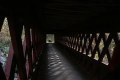 2008_10_13_brookline-nh_01 (dsearls) Tags: footbridge coveredbridge brookline bikeway brooklinenh potanipo nissitissit anthropocene nissitissitriver granitetownrailtrail 20081013 potanipopond