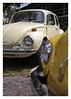 17_02_05_191p (2) (Quito 239) Tags: volkswagen 1971volkswagen 1971volkswagensuperbeetle superbeetleconvertible vw bug vocho escarabajo puertorico haciendaigualdad volky