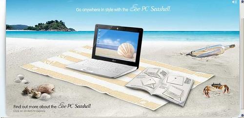 seashell003