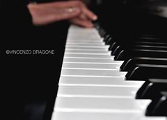 ...maybe he will return sooner or later (dragov) Tags: music macro hands nikon hand piano mani note sound musica tastiera pianoforte suono nikond60 nikonflickraward vincenzodragone atoysorchestrapanicattack