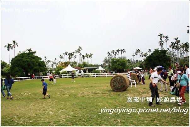 嘉義中埔_綠盈農場20110417_I6859
