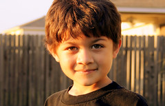 dill2 (manuelfocus) Tags: autumn light boy sunset shadow portrait sky tree fall fence outside backyard