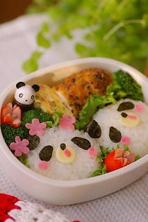 panda twins bento box