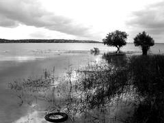 paisible dpot (jieme74) Tags: bw lake noiretblanc lac tire arbre pneu paisible