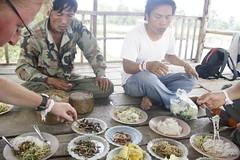 Trekking Dong Natad (AB Travel) Tags: travel laos wereldreis travelaroundtheworld