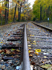Railway track near Little Falls site | Wilmington, DE (Ping Timeout) Tags: wood morning autumn trees winter sky usa cloud cold colour tree green fall beach nature wet beautiful leaves weather sign yellow rock metal way season de coast scenery pretty track view little outdoor rail railway scene falls east amtrak delaware wilmington dull sights reheboth