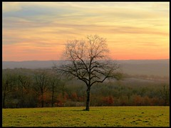Sunset sur le Causse Lotois (lo46) Tags: sunset sky cloud france tree colors rural landscape lot hdr causse midipyrnes supershot 10faves abigfave bouriane anawesomeshot superaplus aplusphoto unature francelandscapes bestofr diamondgallery unjourlaterre artofimages bestcapturesaoi goldstaraward5 betterthangoodlevel2 visionaryartsgallery3elite lapassiondelimagel2