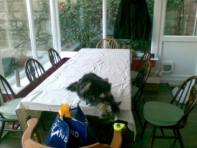 Dining Table Measure Dining Table Tablecloth : 2215135535057a3378fez from choicediningtable.blogspot.com size 500 x 375 jpeg 163kB