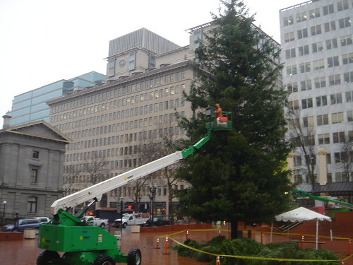 Portland Christmas Tree, Pioneer Courthouse Square