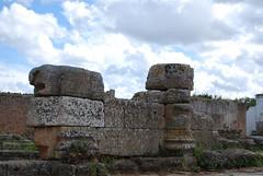 DSC_0126.JPG (tenguins) Tags: africa travel castle architecture clouds ruins mosque arabic adventure morocco berber fortress islamic rabat chelle siteseeing chella romanruins