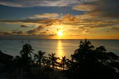 Goodnight Aruba (craig.proulx) Tags: sunset vacation holiday beach canon island hotel inn paradise carribean palm resort aruba palmtree iguana 1022 sunspree