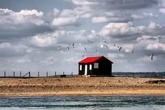 isolated (Linda Cronin) Tags: sea sky beach water birds clouds fence river gulls shingle cambersands rye estuary hut thumbsup soe hdr camber goldenglobe gamewinner supershot flickrsbest challengeyouwinner mywinners 3waychallengewinner platinumphoto anawesomeshot colorphotoaward aplusphoto ultimateshot superbmasterpiece 15challengeswinner lindacronin flickrelite motifdchallengewinner thatsclassy a3b challengegroupgame thechallengegame challengegamewinner friendlychallenges rubyphotographer