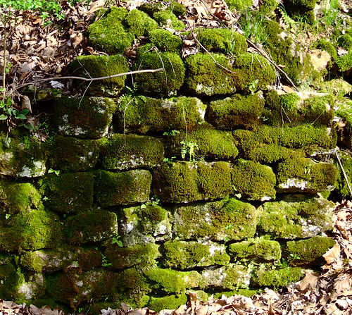 Rockwoods Reservation, in Saint Louis County, Missouri, USA - old railroad stone wall