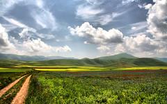 monteleone leonessa castelluccio set (paololivorno) Tags: red sky cloud green yellow country poppy umbria norcia castelluccio platinumphoto aplusphoto goldenvisions