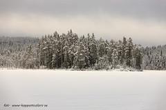 20170222100854 (koppomcolors) Tags: koppomcolors värmland varmland vinter winter sweden sverige scandinavia