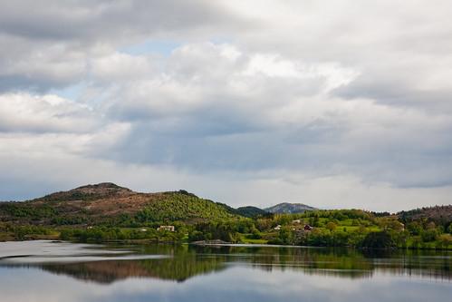 Eikeskog in May