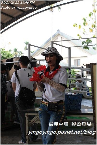 嘉義中埔_綠盈農場20110417_I6979