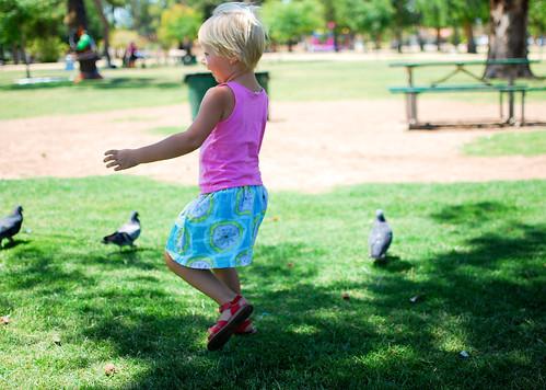 chasing birds2-0162