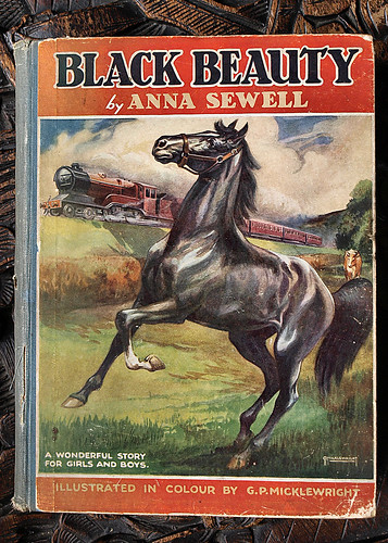 a review of the anna sewells only novel black beauty Anna sewell's novel black beauty is one of the biggest-selling novels of all time five fascinating facts about black beauty it was sewell's only novel.