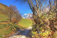 The way to go (christianmeichtry) Tags: mountain snow alps tree fall nature colors leaves clouds switzerland leaf europe suisse path valley wallis valais naturesfinest lötschental aumtun mywinners