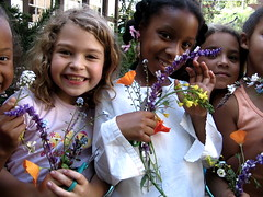 wild flower collections (whirledkid) Tags: california portrait cooking students ecology vegetables kids portraits children taiwan naturallight science health diet agriculture obesity globalwarming nutrition diabetes earthscience sustainableagriculture alicewaters schoolgardens healthykids eatyourcolors childnutrition whirledkid michelbish