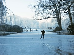 Ice Skating (Vineyards) Tags: blue winter people cold holland tree ice nature water dutch silhouette forest fun cool utrecht blauw iceskating skating nederland thenetherlands natuur explore wonderland frontpage groeneveld patinage kasteel vijver ijs schaatsen koud patinaje baarn plezier pattinaggio explorefrontpage natuurijs