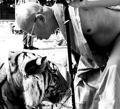 Kissing the tiger for good luck