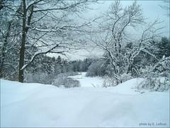 Record snow in Concord....