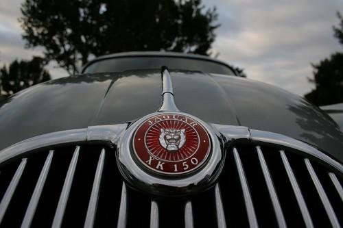 Royale Modern Classic Car Grill Badge 1960/'s NEWPORT COUNTY FOOTBALL  B2.1291