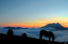 Amanecer en Saibi con Anboto al fondo (Jabi Artaraz) Tags: mountain beautiful landscape golden noche spain bravo europa europe photographer searchthebest sony awesome paz paisaje bilbao zb 500views bizkaia breathtaking vizcaya bilbo basquecountry 1000views saibi pasvasco lainoa egunsentia galope goldenglobe beautifulearth firstquality anboto 3000views supershot 100faves 200faves 1000vistas euskoflickr outstandingshots totalphoto fineartphotos golddragon justclouds mywinners abigfave basquelandscape anawesomeshot superaplus aplusphoto flickrbest impressedbeauy superbmasterpiece goldenphotographer favemegroup5 diamondclassphotographer flickrdiamond theunforgettablepictures theunforgettablepicture excapture betterthangood paisajevasco goldstaraward jartaraz flickrstas llovemypic showmeyourqualitypixels 3000vistas bderechosdeautorauthorscopyrightbjabiartaraz bestofblinkwinners blinksuperstars