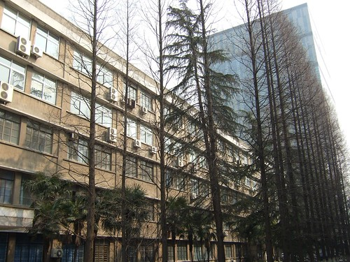 International School of Tongji University
