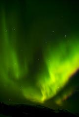 _DSC0048 (Ratatosken) Tags: light sky green norway stars norge nikon nightshot sigma mo aurora plasma d200 northern rana d3 borealis slowshutterspeed nordlys nordland moirana