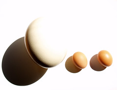 Mother and daughters (isolano.) Tags: light shadow egg onlythebestare unlimitedphotos